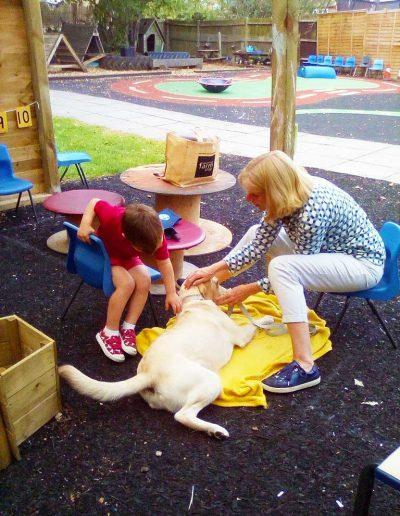 Oakwood Community Pre-school | Gallery | Child stroking Rosie the dog