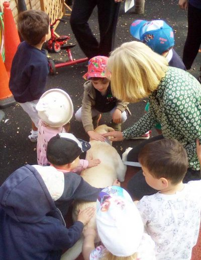 Oakwood Community Pre-school | Gallery | Children stroking Rosie the dog